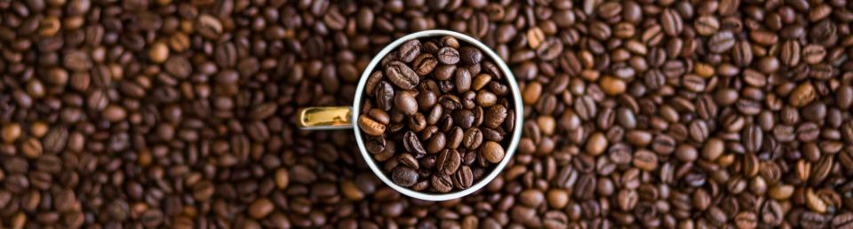 Lessons from the Bridgehead Story